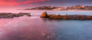 Accountant Listing Partner Coogee Beach Accommodation