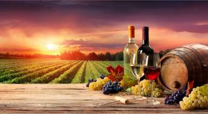 Accountant Listing Partner Winery Find