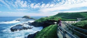 Accountant Listing Partner Phillip Island Accommodation